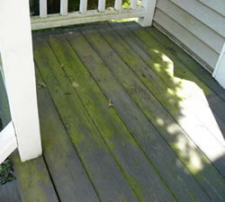 residential power washing before pic 1